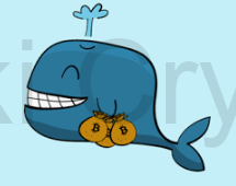 whales in cryptocurrency